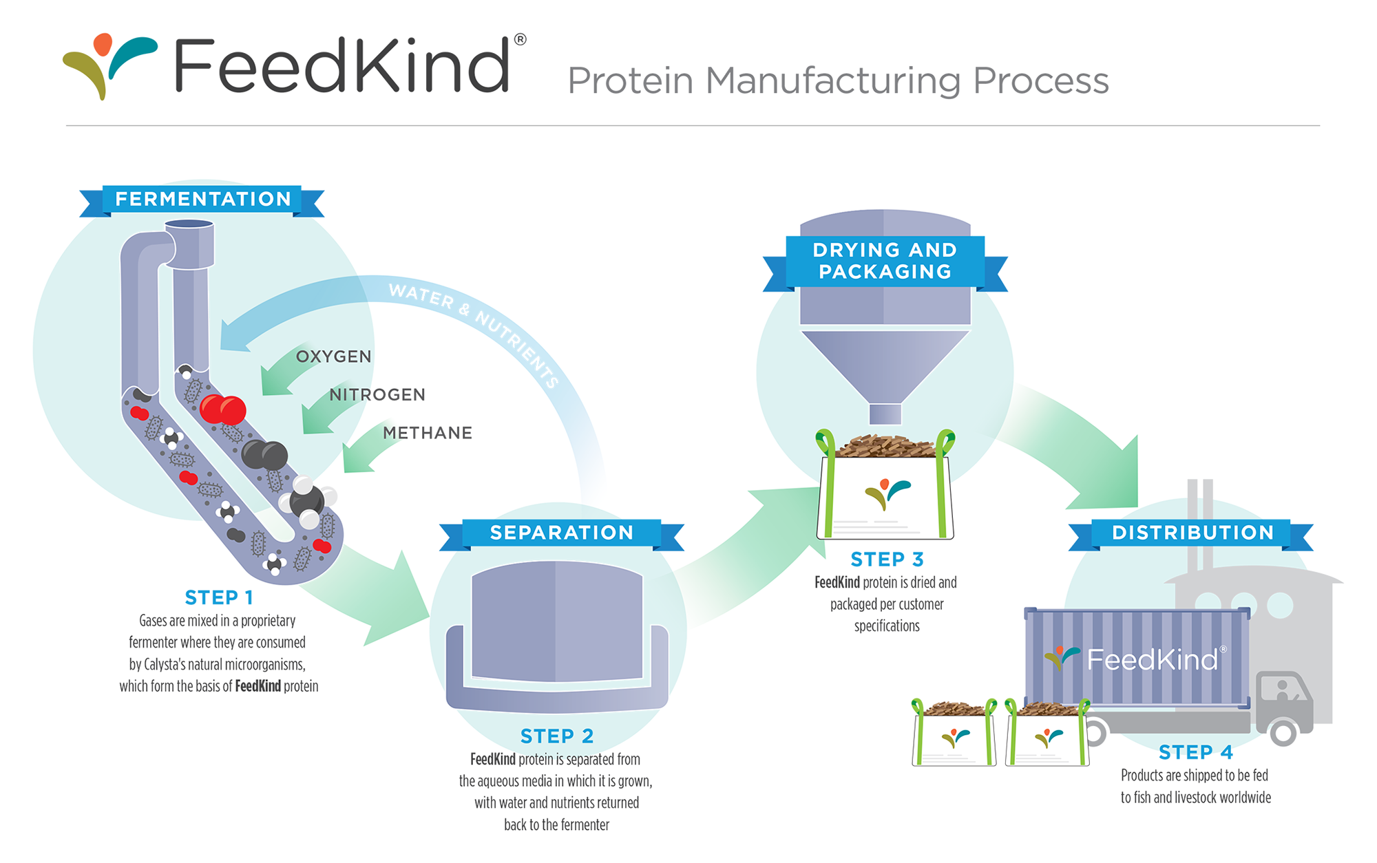 CalystaProteinManufacturingProcess
