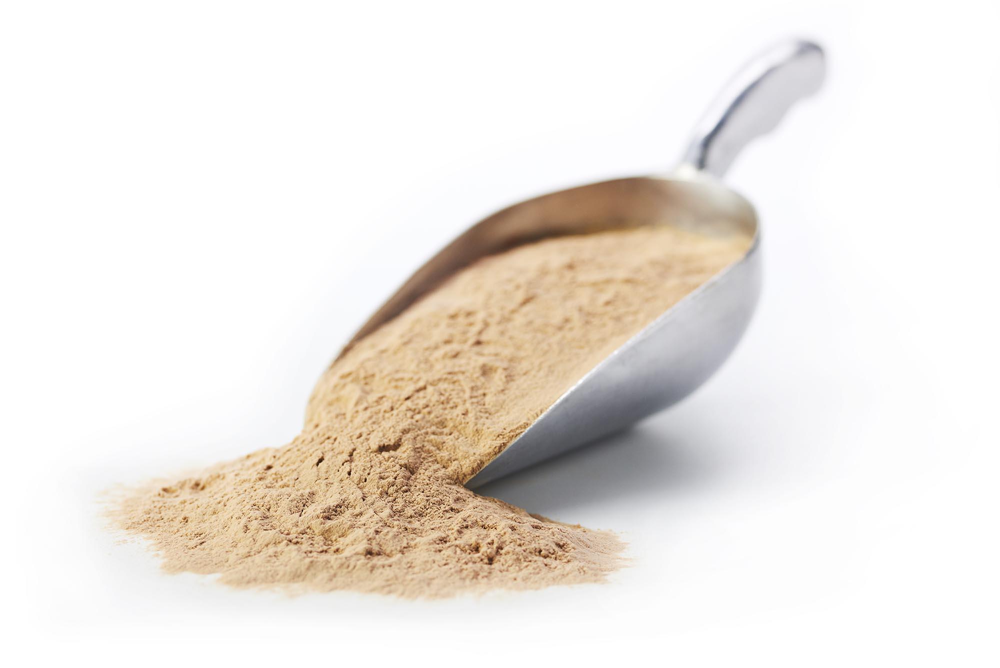 FeedKind® Powder Scoop